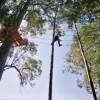 Elektro realiza treinamento com Trekking, Arborismo e Ducks